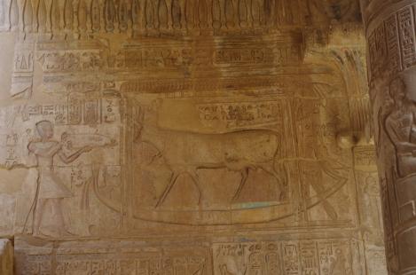 Hathor 3
